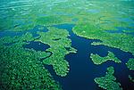 Aerial Everglades National Park, Florida