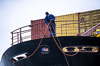 Workers tie off the MSC Banu container ship at CentrePort  in Wellington, New Zealand on Saturday, 18 April 2020. Photo: Dave Lintott / lintottphoto.co.nz