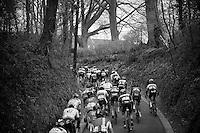 peloton up the Haagaard climb<br /> <br /> 56th De Brabantse Pijl - La Fl&egrave;che Braban&ccedil;onne (1.HC)