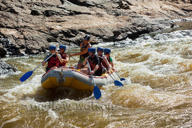 White water rafting on the Barron River.  Cairns, Queensland, Australia
