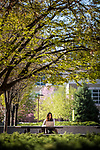 _RE_3705<br /> <br /> 1703-57 GCS Spring<br /> <br /> March 24, 2017<br /> <br /> Photography by Nate Edwards/BYU<br /> <br /> &copy; BYU PHOTO 2016<br /> All Rights Reserved<br /> photo@byu.edu  (801)422-7322