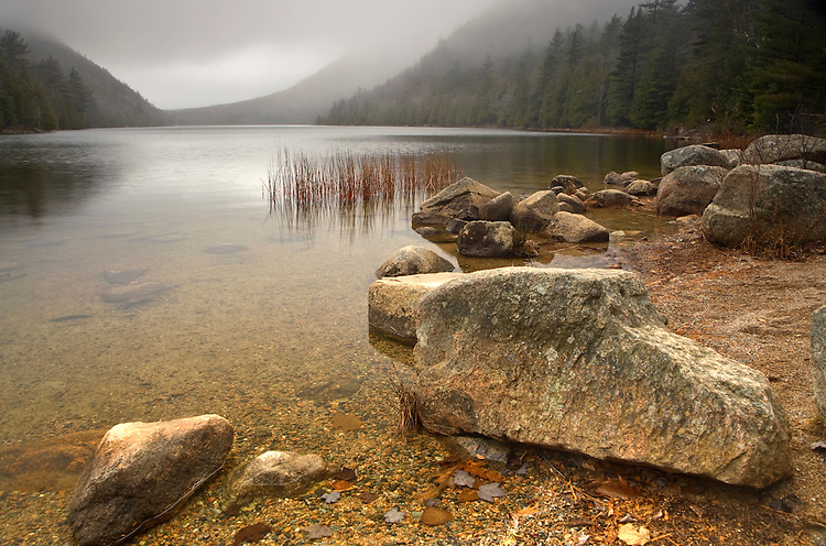 Fog at Bubble Pond in Acadia National Park, Maine