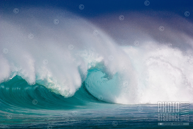 Large empty wave breaking on the north shore of oahu