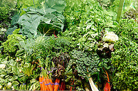 Organic vegetables in a market.