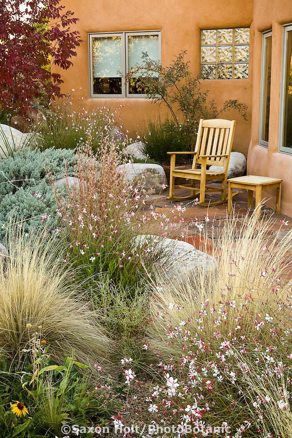 Rocking chair on New Mexico xeriscape patio garden with perennial Gaura lindheimeri and Threadgrass (Nassella tenuissima)