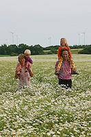 Junge Familie in Kamillenfeld, Vater, Mutter, Tochter und Sohn, Spaziergang, Geruchslose Kamille, Tripleurospermum perforatum, Tripleurospermum inodorum, Matricaria inodora, Scentless False Chamomile