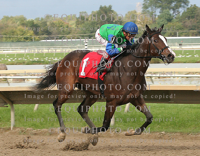 Say A Novena #1 with Rafael Bejarano riding won the $150,000 Brandywine Stakes at Parx Racing in Bensalem, Pennsylvania October 1, 2011.  Photo By Alyssa Spakowski/EQUI-PHOTO