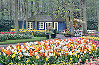 Small cottage flower shop, Keukenhof Gardens, Lisse, Netherlands