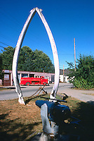 Coal Harbour, Northern Vancouver Island, BC, British Columbia, Canada - World's Largest Blue Whale Jaw Bones (Balaenoptera musculus) on Display