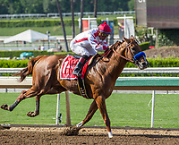 ARCADIA, CA APRIL 22:  #1 Collected ridden by Martin Garcia, wins the Californian Stakes (Grade ll) on April 22, 2017 at Santa Anita Park in Arcadia, CA.(Photo by Casey Phillips/Eclipse Sportswire/Getty Images)