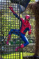 Spiderman Cosplay, Emerald City Comicon 2016, Seattle, WA, USA.