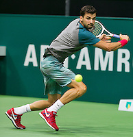 11-02-14, Netherlands,Rotterdam,Ahoy, ABNAMROWTT, Grigor Dimitrov(BUL)<br /> Photo:Tennisimages/Henk Koster