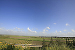 Israel, Sharon, the fields of Binyamina by road 652