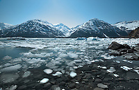 A winter's worth of lake ice mixes with glacial icebergs at Portage Lake, Alaska.
