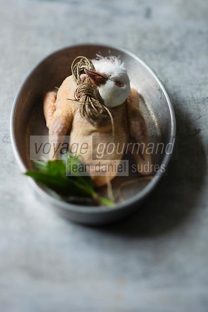 Gastronomie générale/Pigeon - Stylisme : Valérie LHOMME
