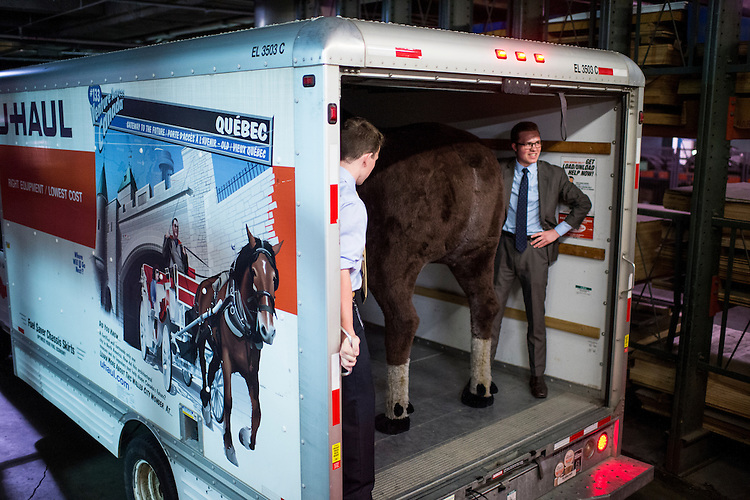 UNITED STATES - JUNE 16: Staff from Sen. Jeanne Shaheen's office prepare to unload a stuffed moose in the Hart loading dock on Tuesday, June 16, 2015. The moose was moved to Shaeen's lobby in the Hart Senate Office Building. A stuffed moose and bear were brought in for the Experience New Hampshire event, hosted by Sen. Jeanne Shaheen, D-N.H., which features dozens of local New Hampshire food to be sampled by members of Congress.g, June 16, 2015. (Photo By Bill Clark/CQ Roll Call)
