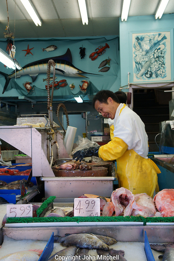 Fish shop in Chinatown, Vancouver, British Columbia, Canada