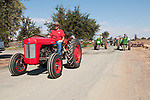 Annual fall Gas-Up at McFarland Ranch near Galt, Calif. of Branch 13, Early-Day Gas Engine and Tractor Association. (EDGE & TA)..1955 Ferguston Mod. 35 tractor