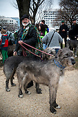 Rob Maloy and his Irish wolfhounds get ready for the 2013 St Paddy's parade in Washington, DC.
