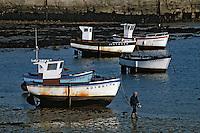 Europe/France/Bretagne/29/Finistère/Ile de Sein: Bateaux au port à marée basse