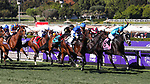 November 1, 2019: Structor, ridden by Jose Ortiz, wins the Breeders' Cup Juvenile Turf on Breeders' Cup World Championship Friday at Santa Anita Park on November 1, 2019: in Arcadia, California. Bill Denver/Eclipse Sportswire/CSM