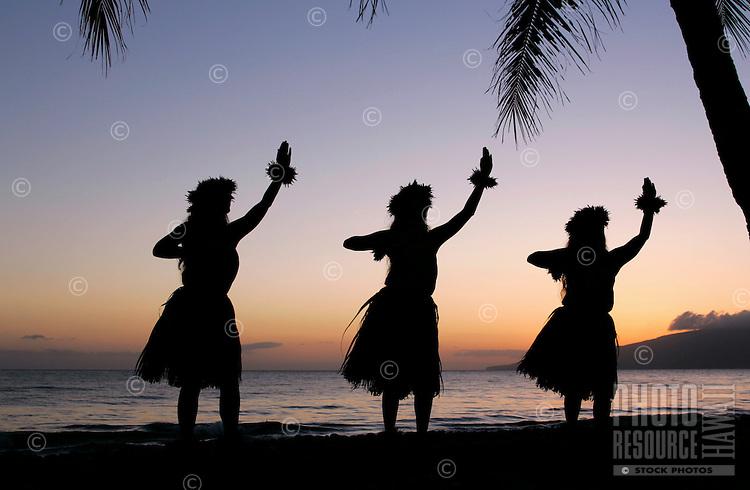 Three hula dancers at Olowalu, Maui, framed by palm trees.