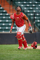 Kenny Baez (8) tracks a pop up during the Dominican Prospect League Elite Underclass International Series, powered by Baseball Factory, on July 21, 2018 at Schaumburg Boomers Stadium in Schaumburg, Illinois.  (Mike Janes/Four Seam Images)