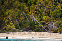 Denis Bay<br />