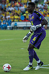 Onana of Camerun during the friendly match between Camerun and Colombia in Madrid, Spain 13 jun 2017.(ALTERPHOTOS/Rodrigo Jimenez)