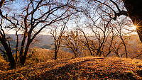 Leonard Lake Reserve