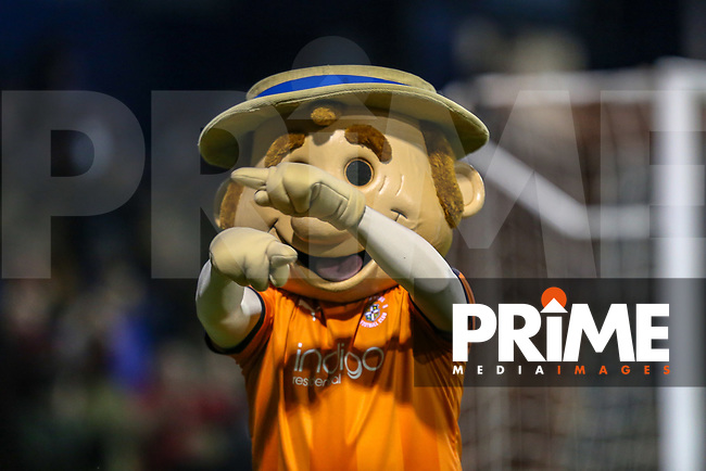 Harry the Hatter, the Luton Town mascot, during the Sky Bet League 1 match between Luton Town and Bradford City at Kenilworth Road, Luton, England on 27 November 2018. Photo by David Horn.