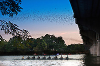 Rowers practice zooming up and down Town Lake Austin as Congress Bridge Bats make their evening flight to hunt for food.
