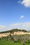 Israel, Zippori in the lower Galilee