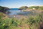 Abercastle bay, Pembrokeshire, Wales