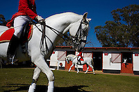JOHANNESBURG, SOUTH AFRICA - JULY 16:  Women school Lipizzaner Stallions at the South African School.  The South African Lipizzaners have earned the honour of being the only performing Lipizzaners outside Vienna recognised by and affiliated to the Spanish Riding School and a close association is maintained between the two establishments.  (Photo by Landon Nordeman)
