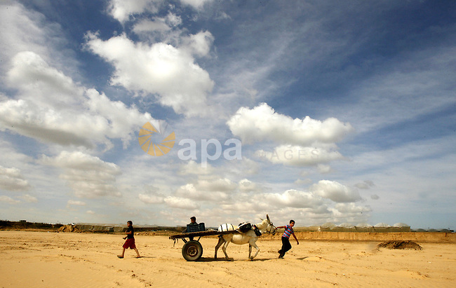 Palestinian boys ride a donkey cart in in Rafah, near the Israel border, in the southern Gaza Strip, 26 May 2012.  the annual wheat  harvest season in Rafah, near the Israel border. Photo by Eyad Al Baba