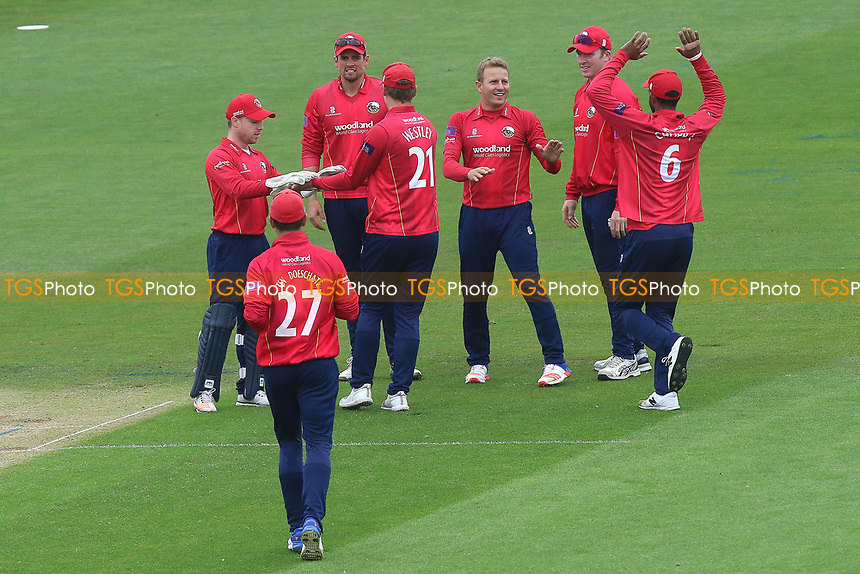 Neil Wagner of Essex is congratulated by his team mates after taking the wicket of Jacques Rudolph during Glamorgan vs Essex Eagles, Royal London One-Day Cup Cricket at the SSE SWALEC Stadium on 7th May 2017