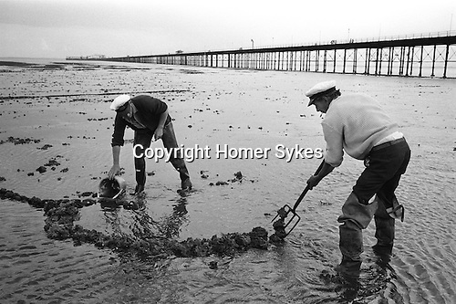 Fishermen diggig for Lug worms. Southend on Sea. Essex England 1974