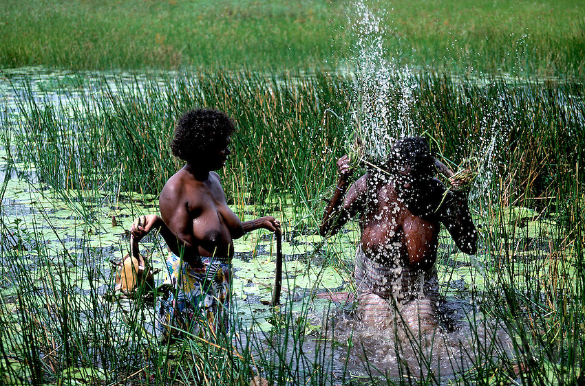 Aboriginal Women hunting for File Snakes and Turtles,<br /> Northern Territory Australia