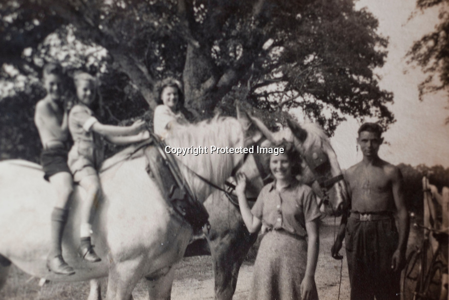 BNPS.co.uk (01202 558833)<br /> Pic: Phil Yeomans/BNPS<br /> <br /> Timeless - Roberts father Tom with his sisters on the farm in 1940.<br /> <br /> Old fashioned farmer Robert Sampson is turning back the clock on his  acre plot at Harbridge, near Ringwood in Hampshire.<br /> <br /> Despite his tractor giving up the ghost last year Robert has managed to plough 20 acres, roll 60, and harrow 100 all with the help of traditional horse power from his 18 Percheron heavy horses.<br /> <br /> The sight of him at work using long forgotten methods frequently stops the traffic and he is often interupted to explain to passers by delighted to see horses working the fields of England once more.<br /> <br /> Although it takes him three times as long to till the land as it would with a tractor Robert maintains the economic benefits as well as his enjoyment more than make up for the slightly slower progress.<br /> <br /> Robert is a fifth generation farmer on the farm which his family have worked with horses since 1885.