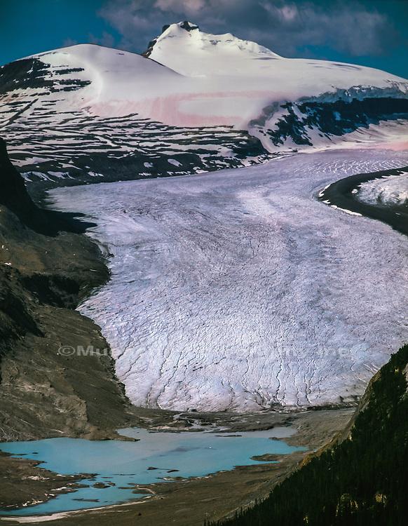 Seskatchewan Glacier,Banff National Park,Canada AB