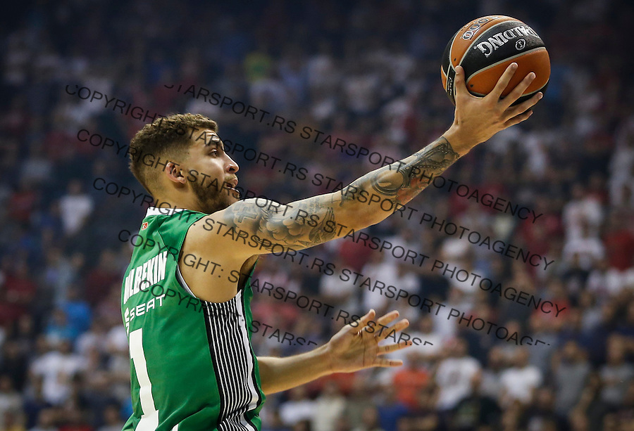 BELGRADE, SERBIA - OCTOBER 13: Scottie Wilbekin of Darussafaka in action during the 2016/2017 Turkish Airlines EuroLeague Regular Season Round 1 game between Crvena Zvezda MTS Belgrade and Darussafaka Dogus Istanbul at Aleksandar Nikolic Hall on October 13, 2016 in Belgrade, Serbia. (Photo by Srdjan Stevanovic/Getty Images)