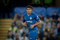 Reece James of Chelsea U23 during the Premier League 2 match between Chelsea U23 and Brighton & Hove Albion Under 23 at Stamford Bridge, London, England on 13 September 2019. Photo by Andy Rowland.