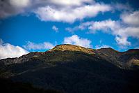 Mount Holdsworth / Tararua Forest Park near Masterton, New Zealand on Friday, 10 February 2019. Photo: Dave Lintott / lintottphoto.co.nz