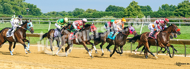 Start Jumping winning at Delaware Park on 8/25/16