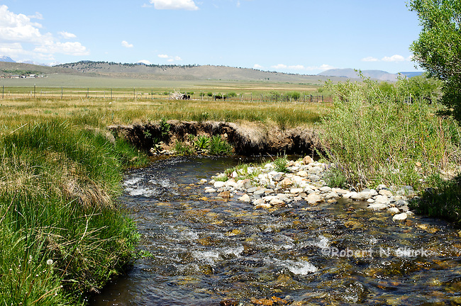 McGee Creek in the California Sierra