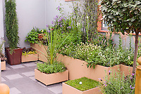 Garden patio outdoor room with privacy walls, with upscale raised container beds and planters, mixture of perennial plants, flowers, herbs, foliage, bay laurel standard, evergreen conifer in pot, bamboo, miniature backyard putting green for fun