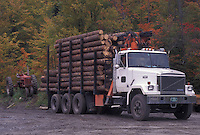 AJ4545, logging, truck, Vermont, A truck is piled high with cut logs in Walden Station in Caledonia County in the state of Vermont.
