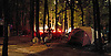 Light from one of the camp residents cars light up the otherwise pitch black night of the camp on a late summer evening. Peter Ackeman / APP