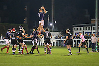 Freddie Clarke of London Scottish (6 Blue) collects the ball in the line-out during the Greene King IPA Championship match between London Scottish Football Club and Nottingham Rugby at Richmond Athletic Ground, Richmond, United Kingdom on 16 October 2015. Photo by David Horn.